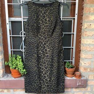 Ann Taylor leopard olive green sheath dress 4P